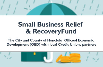 Small Business Relief and Recovery Fund